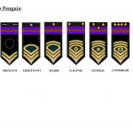 ranks-of-the-recon-federation-of-club-penguin-1
